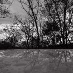 321/366 days photography season 7